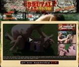 Visit Brutal Catfight